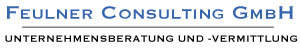 Feulner Consulting GmbH Logo